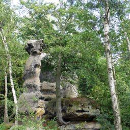 Am Bergsteig in Schmilka