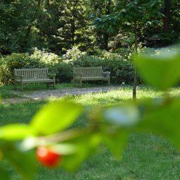 Entspannung im Rhododendronpar
