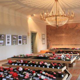 Großer Saal im Kamelienschloss