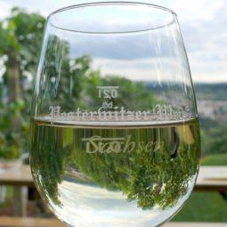 Gut Pesterwitz, Weinverkostung