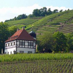 Hoflößnitz Radebeul
