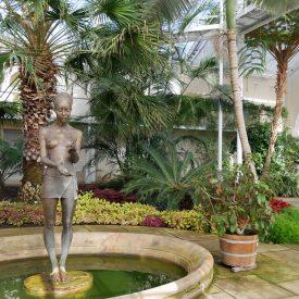 Pillnitzer Palmenhaus - Natur und Kunst
