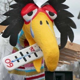 Vogelgrippe zum Radeburger Karnevalsumzug