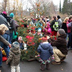 Weihnachten Zoo Dresden