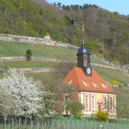 Weinbergkirche in Pillnitz