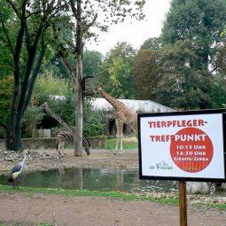 Zootag Dresden