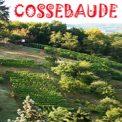 Cossebauder Bauernberge