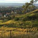 Herbstlandschaft Goldener Wagen