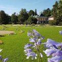 Schlosspark Pillnitz 2016
