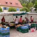 Wochenmarkt Hellerau